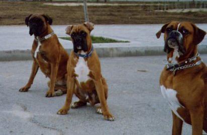 Team-3-Roca-Kay-Duncan